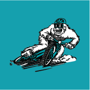 yeticycles.com
